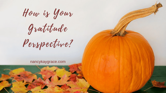 Gratitude Perspective