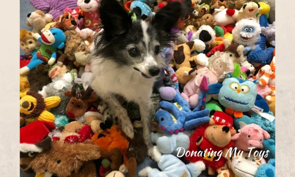 Donating My Toys