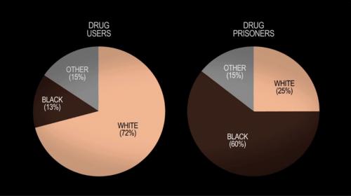 drugusers_prisoners