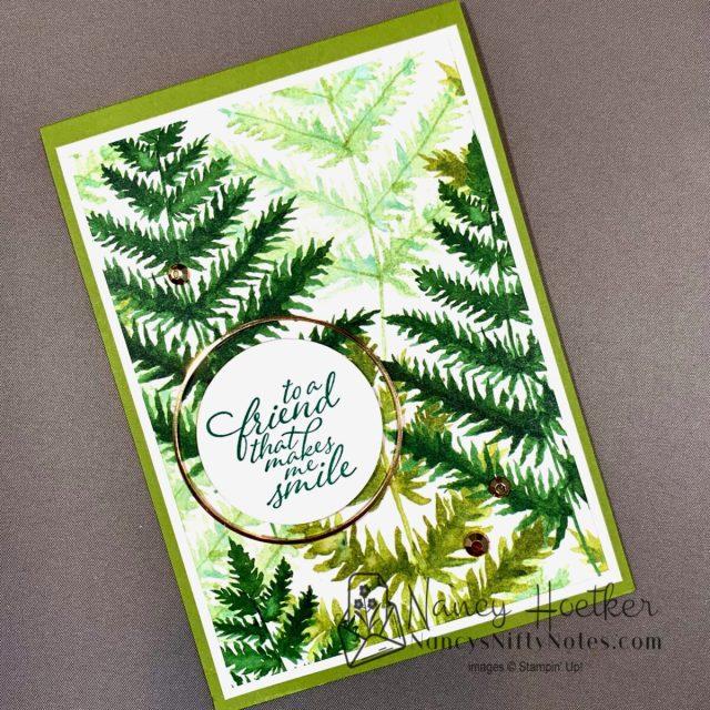 Forever Greenery Ferns 3