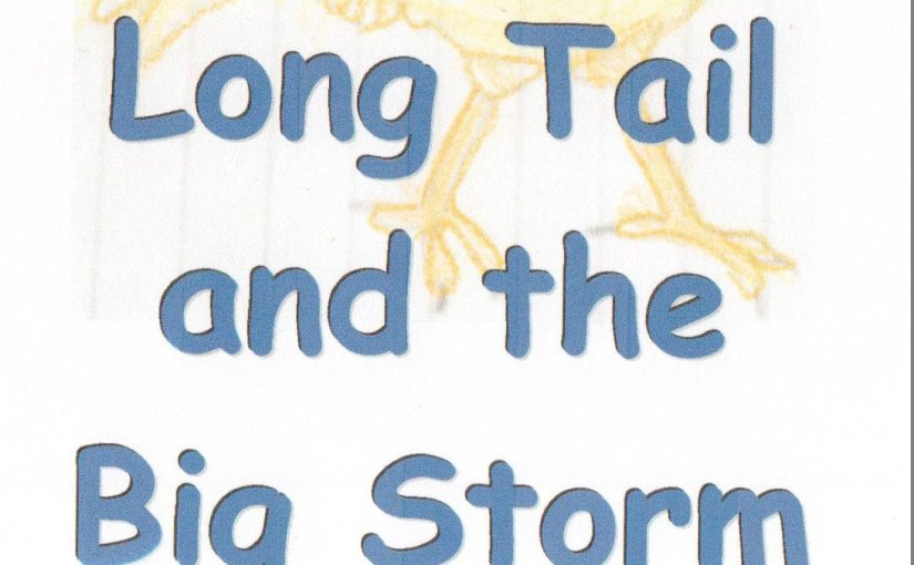 A Storm and Chicken Story