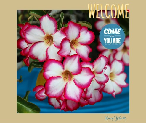 SIL Welcome