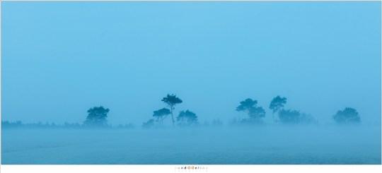 Het blauwe uurtje voor zonsopkomst en de mist