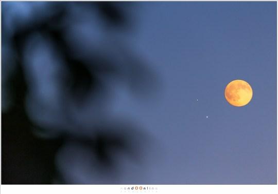 Venus en Jupiter bij elkaar. Om een idee te hebben hoe dicht bij elkaar dat was, is de Maan ter vergelijking erbij gezet.
