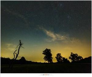 Twee Perseïden, helder genoeg om door de lichtvervuiling heen te zien