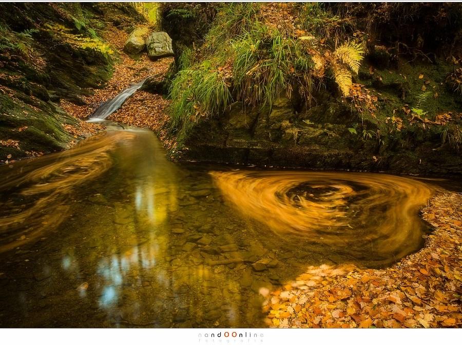 Wij houden van de herfst en de natuur weet het en toont het ons. Maar alleen als we opletten, geduldig zijn en goed kijken. (24mm, f/11, ISO100, 30sec)