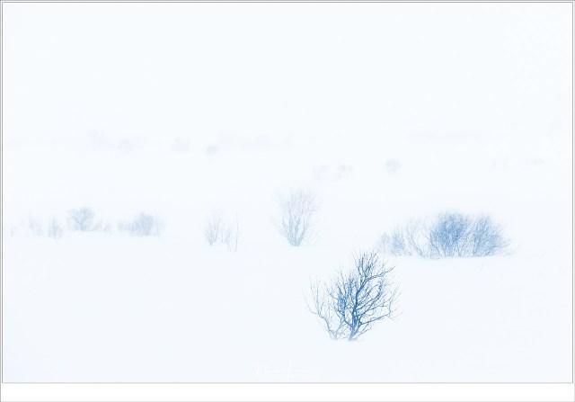 Tijdens een sneeuwstorm buiten Leknes
