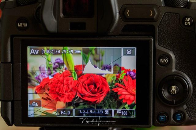 Een neutrale beeldstijl voor een goede beoordeling van je foto