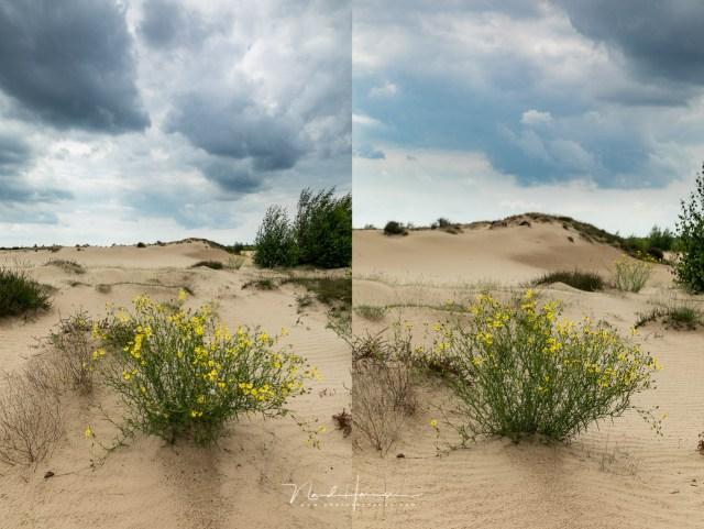 Hoe breng je een voor- en achtergrond goed in beeld? - door brandpuntafstand en je eigen afstand