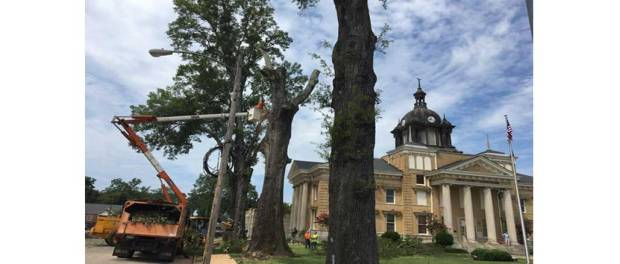 courthouse oaks