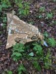 Union County MS crash site