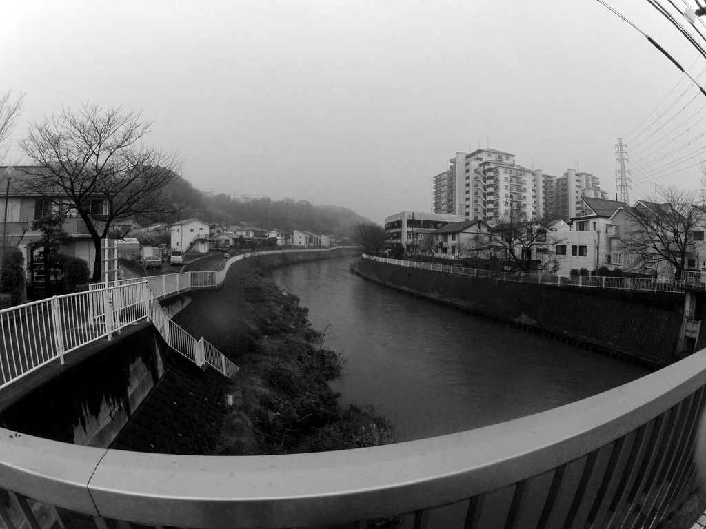 Raining down by the river - Black and white