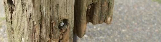 woodpost1.jpg