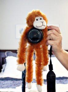 camera buddy monkey