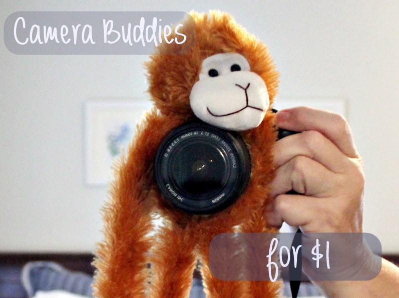 Camera Buddies