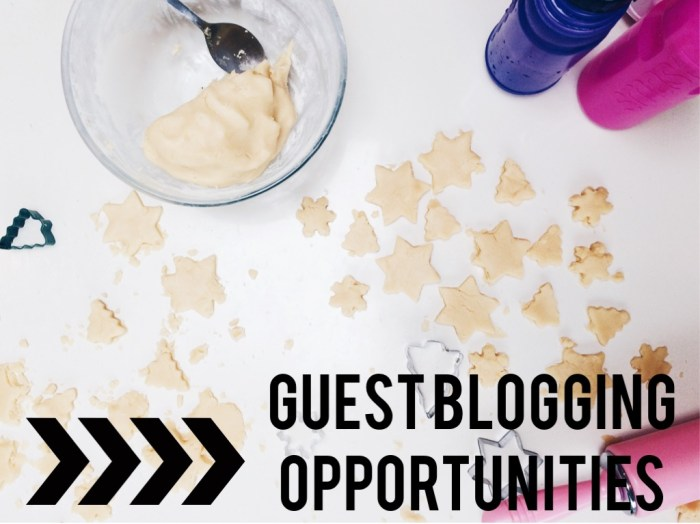 2015 Guest Blogging Opportunities on NANNY SHECANDO