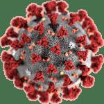 Curing Corona Virus by Ozone Micro Nano Bubbles
