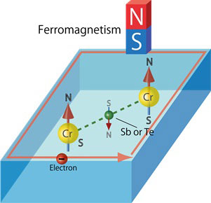 Ferromagnetism mediated by Sb or Te atoms
