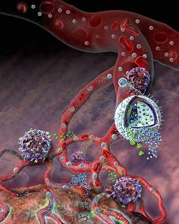 A cutaway illustration of a nanogel