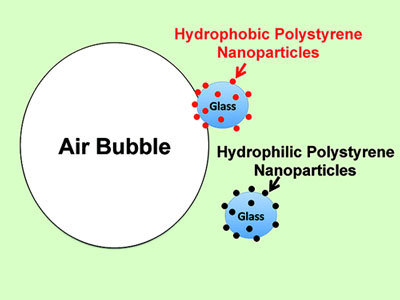 he ability of polystyrene nanoparticles to facilitate the froth flotation of glass beads was correlated to the hydrophobicity of the nanoparticles