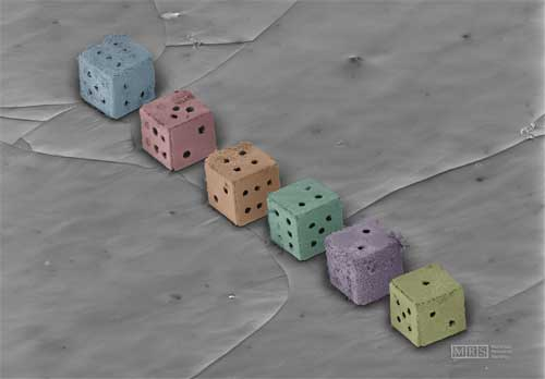 Dirty Dice