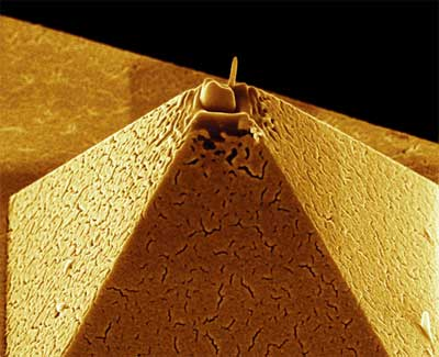golden pyramid - tip of an atomic force microscope