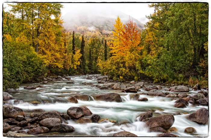 This image is one of my favorites created towards the end of my journey to Level 20. The Little Susitna River is at the height of fall color. I wanted to blur the water to capture the essence of it flowing over the boulders. I used the fog and trees to frame the image and processed it to bring the colors out in the trees and water.