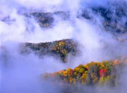 Brilliant autumn colors paint the trees in the land of blue smoke, Great Smoky Mountains National Park, NC.