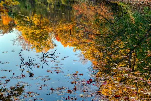 Fall foliage reflecting in lake, Twin Lakes area, New York Botanical Garden, Bronx, NY. f/9.5 @ 70mm, 5-image HDR compilation.