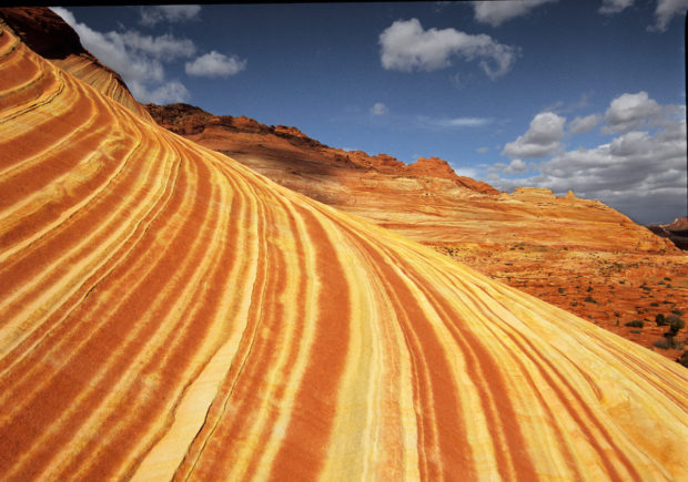 Striations: Such sensuously rounded red rock forms are common in the bowl of the Coyote Buttes.