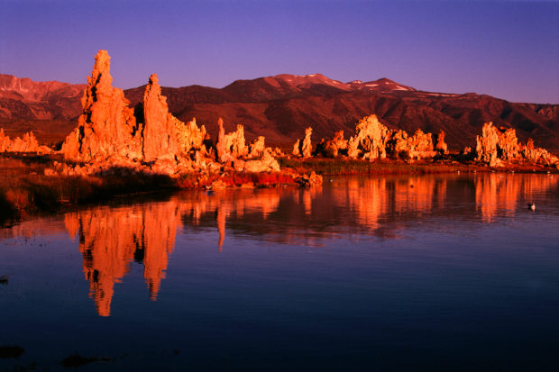 Tufa (calcium carbonate) formations stand in Mono Lake with the rugged Sierra Nevada behind.
