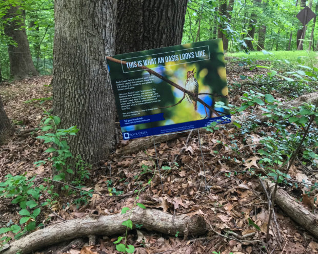 "The Rock Creek Conservancy is partnering with the National Park Service and working with the local community to strategically restore five sites (""mini-oases"") within Rock Creek Park."
