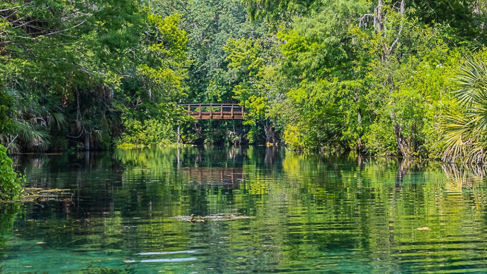 The Fort King Paddling Trail on the Silver River in Silver Springs State Park Florida.