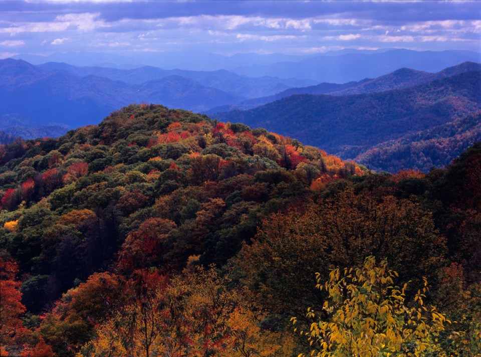 Bump: Autumn in the Smokies paints these venerable mountains with a riot of brilliant colors.