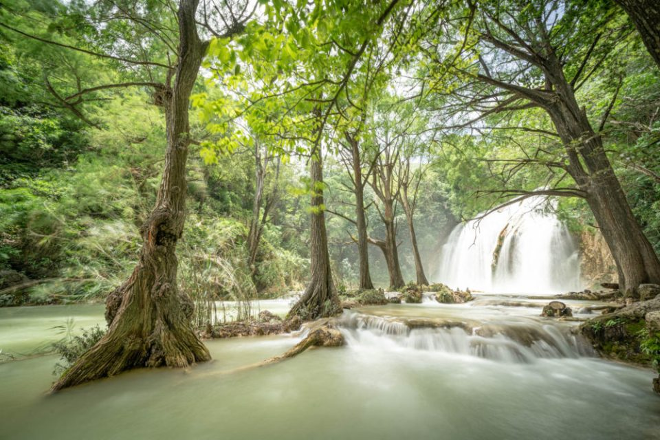 Photo of waterfall in a jungle.