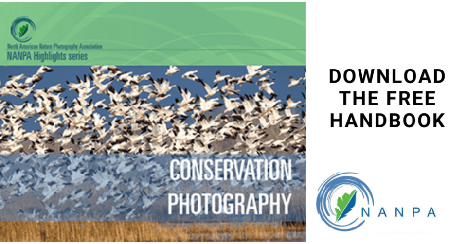 Cover of the NANPA Conservation Photography Handbook