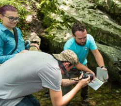 Students at work during the 2019 High School Scholarship Program at the Great Smoky Mountains Institute at Tremont. © Tom Haxby.