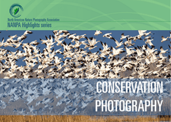 Conservation Photography handbook cover