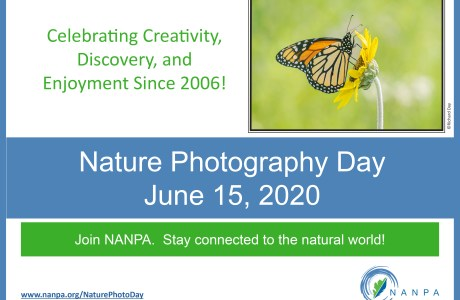 Nature Photography Day poster