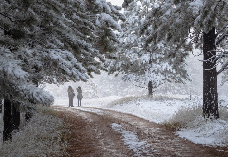 A snowy forest landscape with several figures on a curving path through the trees.  Caption is Two members of the group explore the beauty of an unexpected snowfall during an outing.