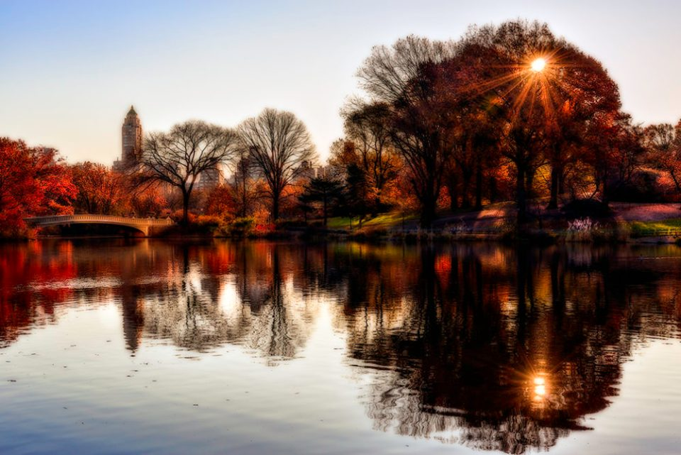 """Sunrise at The Lake in Central Park,"" © F.M. Kearney"