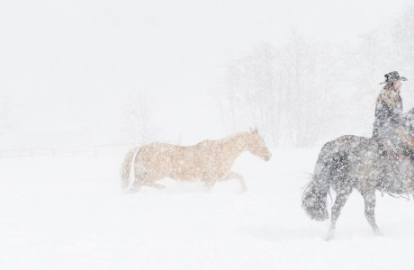 Montana Cowgirl and Horses in a Snowstorm © Debbie McCulliss