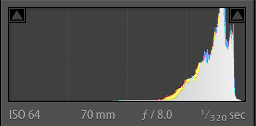 NEF (Original Raw File) Histogram