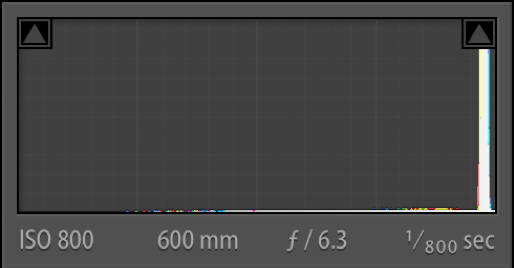 Histogram of Final Edited TIF