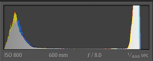 Histogram of NEF (Original RAW file)
