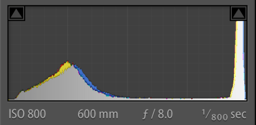 Edit Histogram