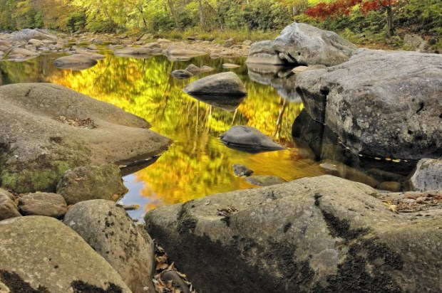 Autumn is reflected in Williams River, Monongahela National Forest, West Virginia.