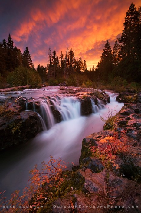 The Rogue River is a river located in the southwestern part of Oregon, flowing from the Cascade Range to the Pacific Ocean.  The Rogue Gorge is a narrow channel formed by volcanic basalt rock that the river flows through. © Sean Bagshaw