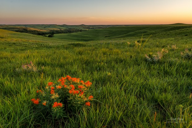A Great View of the Flint Hills by Scott Bean