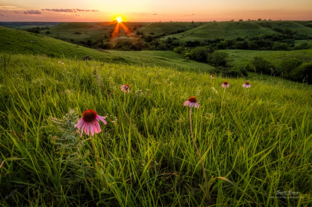 Out in the The Flint Hills by Scott Bean
